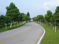 武陟县大封镇东唐郭村2019年农村公路建设项目