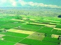 2020年商丘市民权县高标准农田建设项目