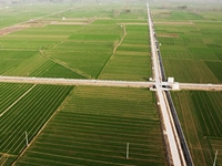 伊川县农业农村局2020年6万亩高标准农田建设项目