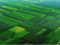 叶县2019年8万亩高标准农田建设项目(叶邑镇)二标段(二次)